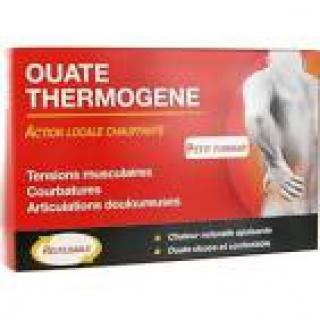 Toux et Thermogène... 971252THERMOGENEACTUEL