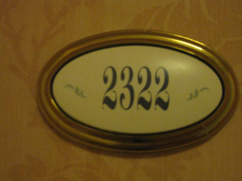 [Disneyland Paris] Disneyland Hotel - chambre Castle Club (8-10 décembre 2010) (début du TR p.9) - Page 10 972363IMG2410