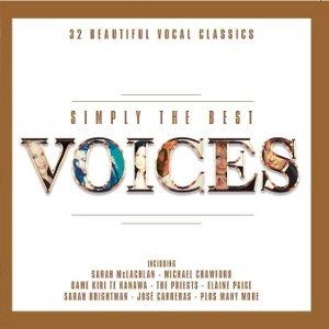 Compilations incluant des chansons de Libera 977453Simplythebestvoices300