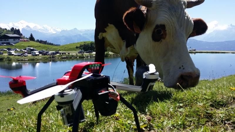 Mes x-maxx en vacances dans les Alpes. 98550920160807135459