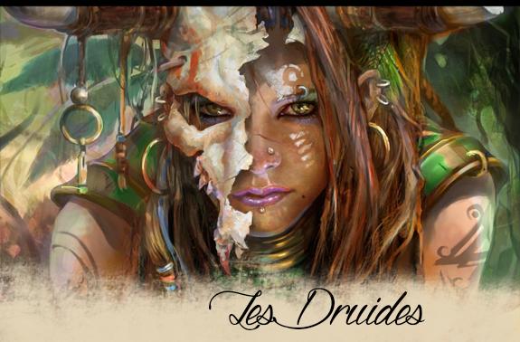Les Druides 985969druide