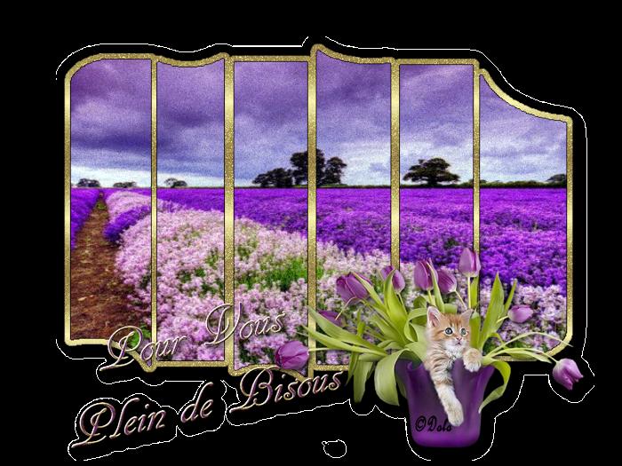 Bon Vendredi 9906241bisous4027435