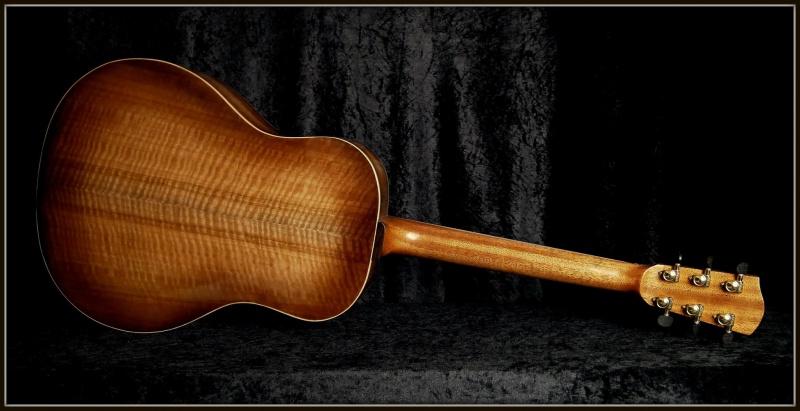 projet guitare Darmagnac en cours!! - Page 5 992108175046167331719835159942060097893557323601o
