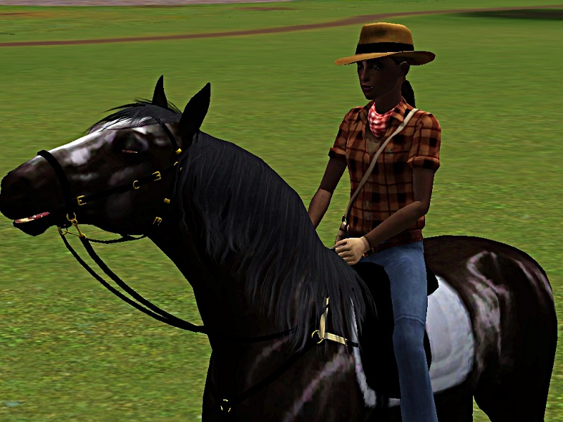 "[Challenge] Teens and Horses ""Sims 3"" - Page 3 995657premiremont"
