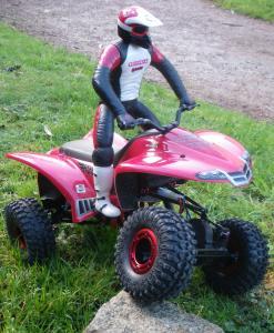 Crawler quad Punisher Graupner Mini_156573craw2