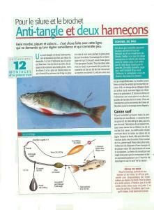 Question sur montage de la pêche du brochet au vif  Mini_326644brochetamecondouble