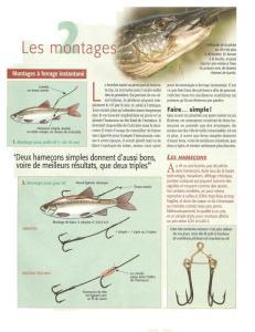 Question sur montage de la pêche du brochet au vif  Mini_364034grosvif2ameconrenversser