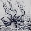 Cryptides marins