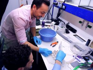 [HELP] Candy Corals recherche des souches pour ses expériences en labo Mini_642050fbkprotob1smal