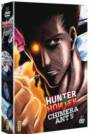 Vos achats d'otaku et vos achats ... d'otaku ! - Page 12 Mini_785899hunterxhunter2011serietvcoffret10coffretdvd240876