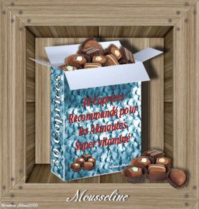 Les caprices de Mousseline Mini_841001mousseline