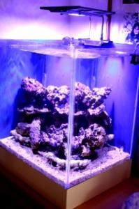 100 litres de greg43590 - Page 2 Mini_876903IMG5834