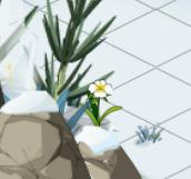 quêtes Dofus des Glaces: Frigost 1 Mini_884577botaniqueniquenique