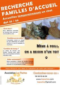 L'association les pachas (35) Mini_924944faaccueiltemporaire1a83ac4