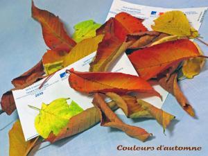 Thème du mois de Novembre : Les couleurs de l'Automne Mini_995916IMG05621webjpg