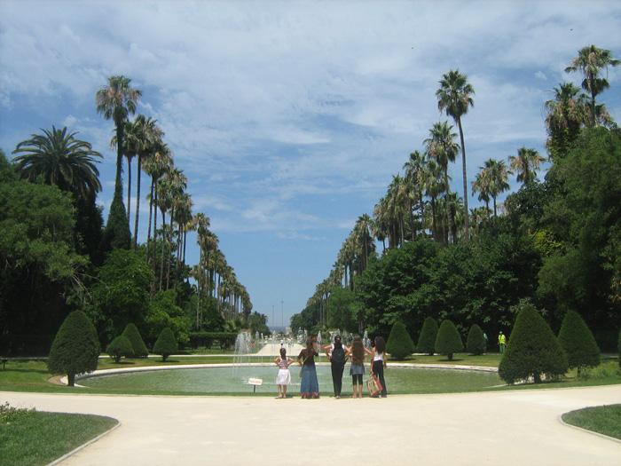 Le Jardin d'Essai du Hamma ... Un patrimoine exceptionnel 219888IMG_0460