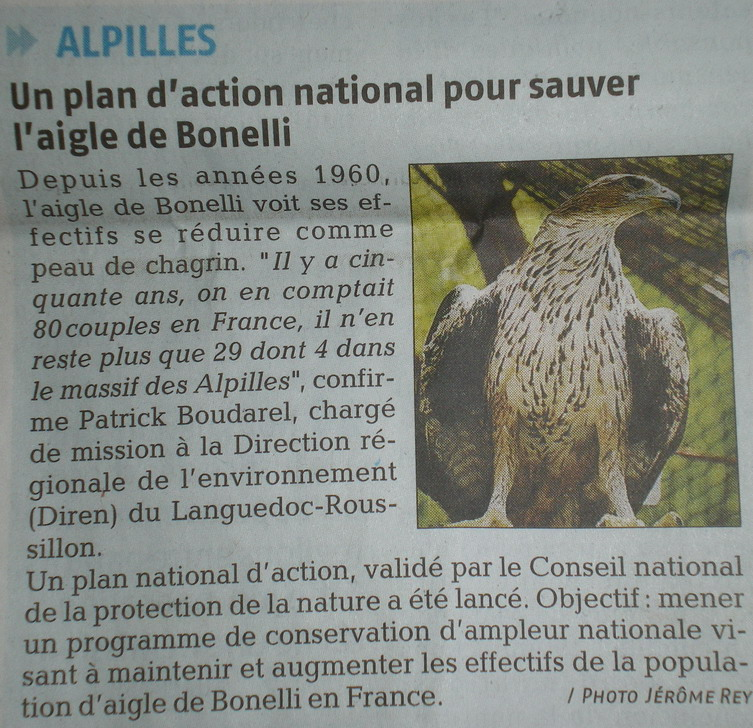 LA FAUNE ANIMALE MEDITERRANEENNE - Page 2 282824IMGP5164