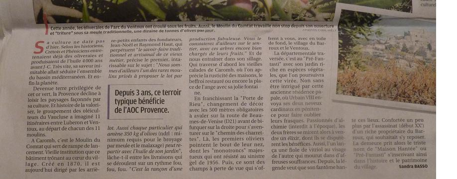 LA VEGETATION MEDITERRANEENNE - Page 2 315472P1030741