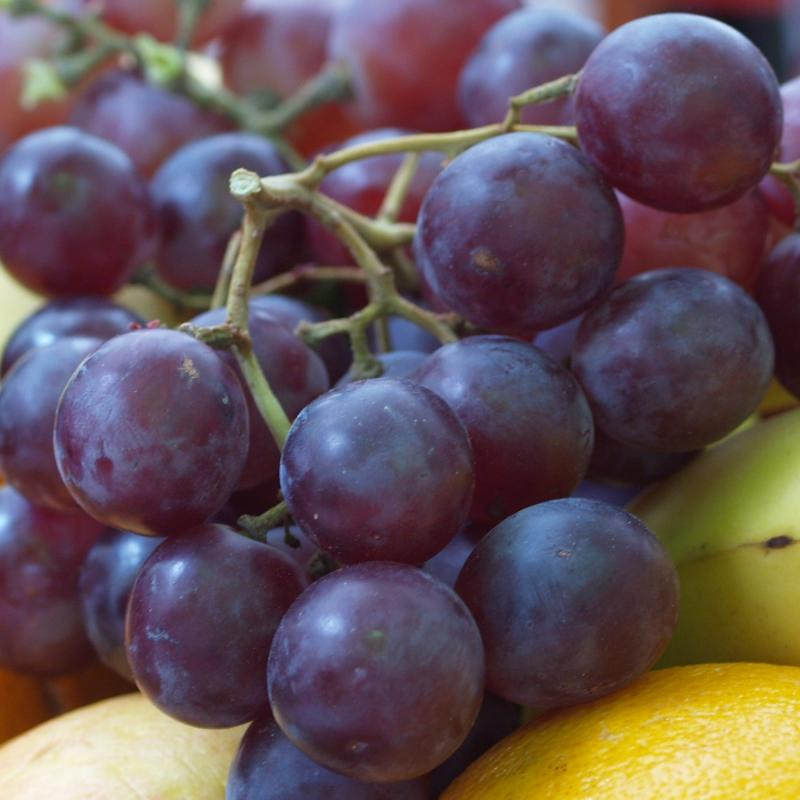 coupe de fruits 328365P4263669___recadree_01