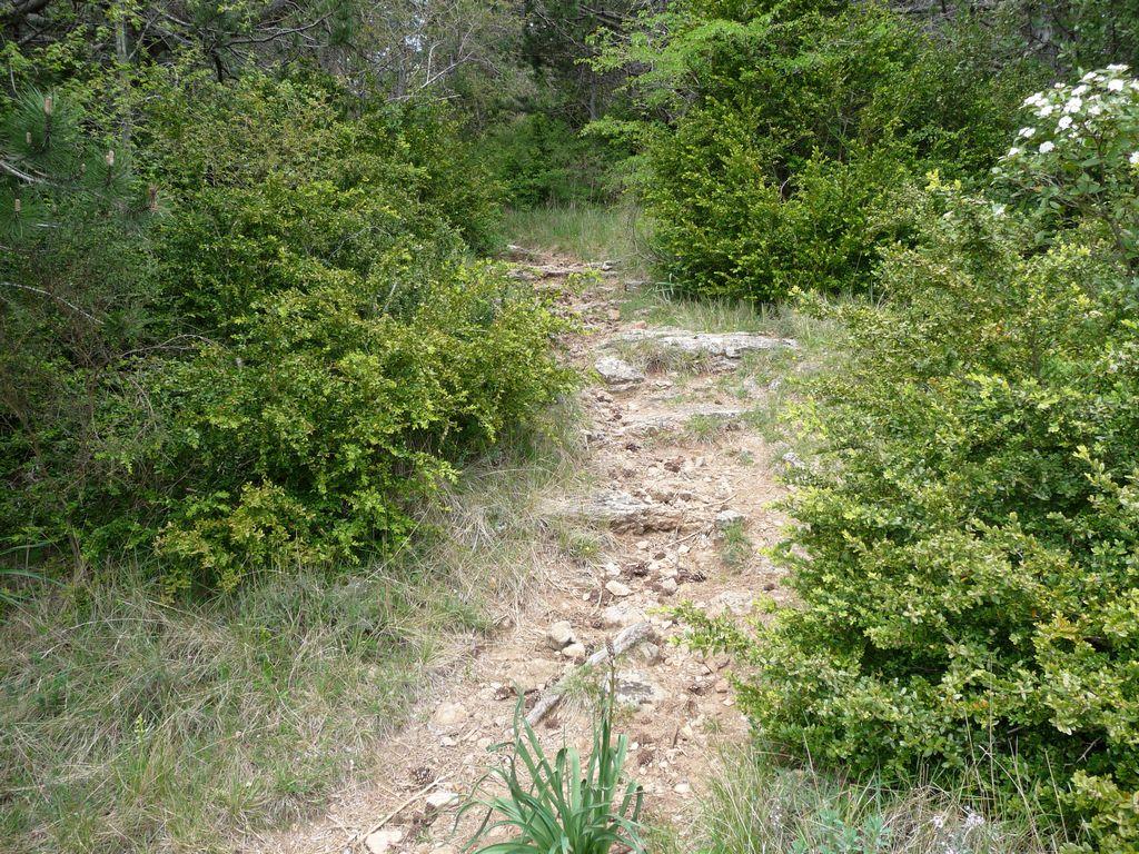 Arboras - Col du Vent - Canyon du Diable - Round 3 351529tn_P1010610