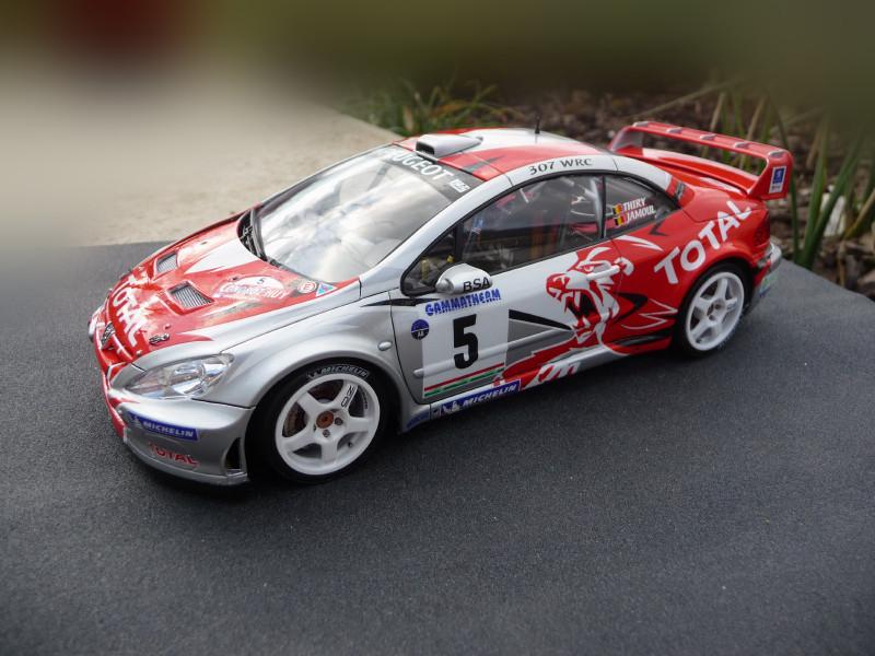 Peugeot 307 WRC Thiry/Jamoul Condroz 2006 403804P1000669