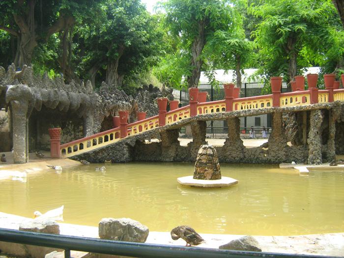 Le Jardin d'Essai du Hamma ... Un patrimoine exceptionnel 501213IMG_0407