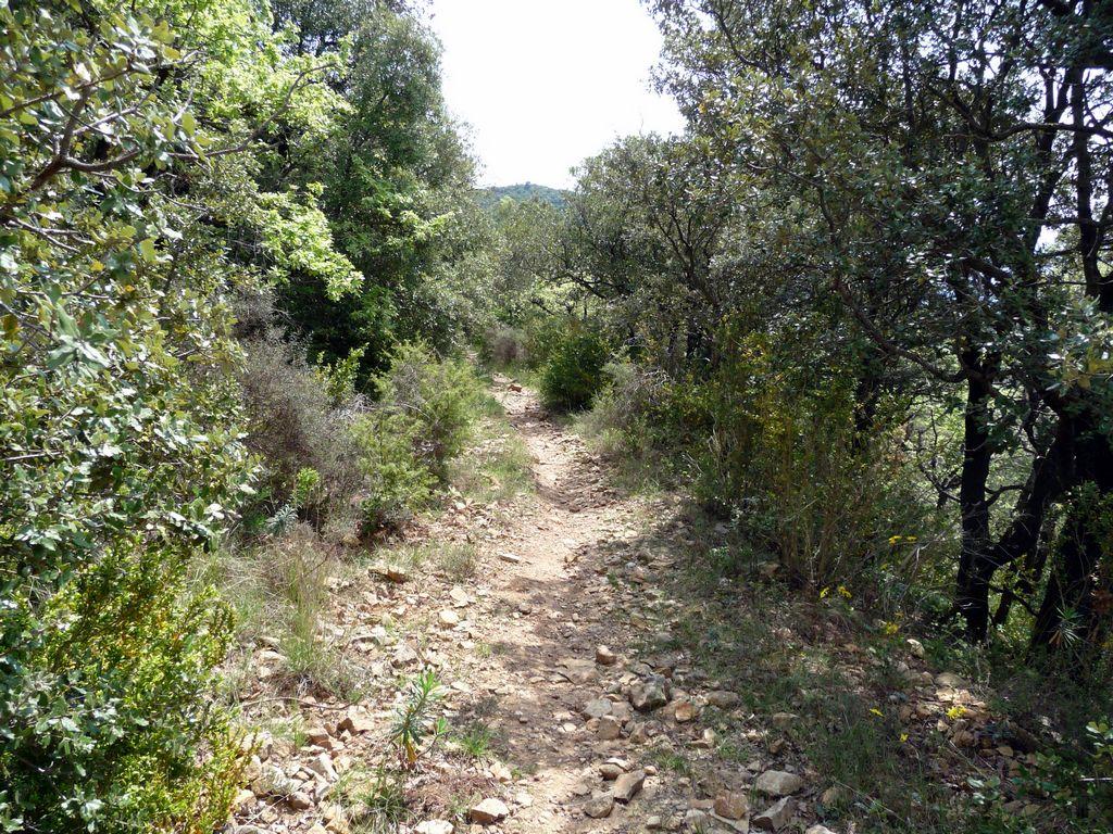 Arboras - Col du Vent - Canyon du Diable - Round 3 557395tn_P1010597