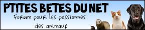 Petites Betes Du Net 572027bbc