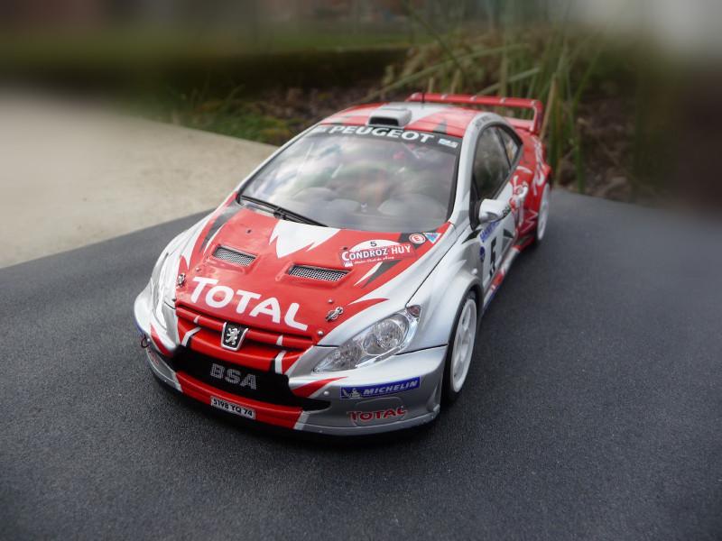 Peugeot 307 WRC Thiry/Jamoul Condroz 2006 625895P1000670