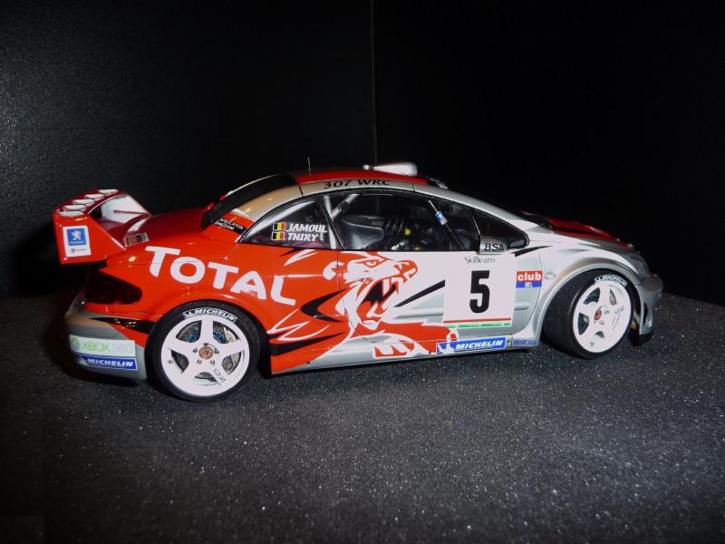 Peugeot 307 WRC Thiry/Jamoul Condroz 2006 694203P1000666