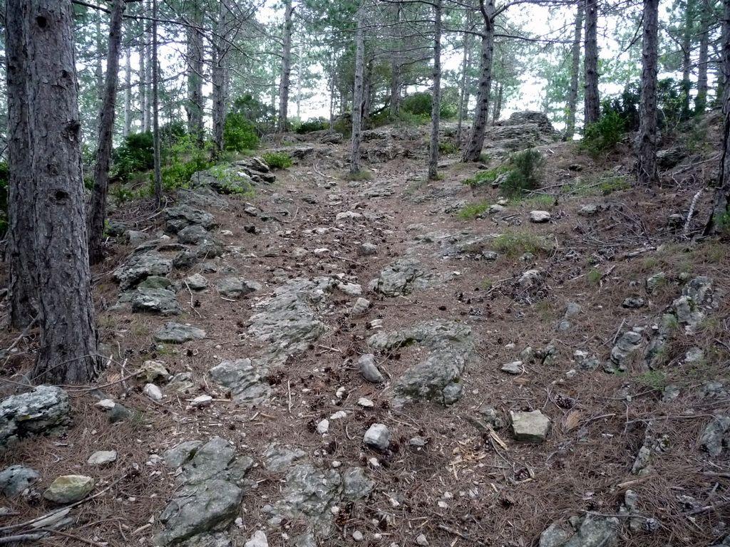 Arboras - Col du Vent - Canyon du Diable - Round 3 759955tn_P1010654