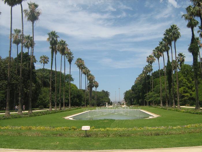 Le Jardin d'Essai du Hamma ... Un patrimoine exceptionnel 782976IMG_0445