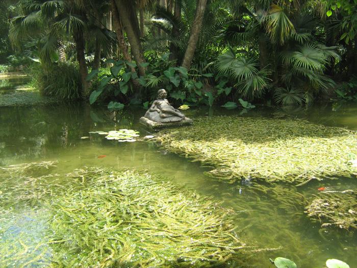 Le Jardin d'Essai du Hamma ... Un patrimoine exceptionnel 799306IMG_0486