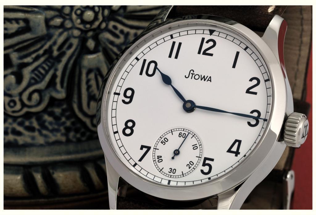 Feu de vos montres à aiguilles bleues 891861DSC_6593N22