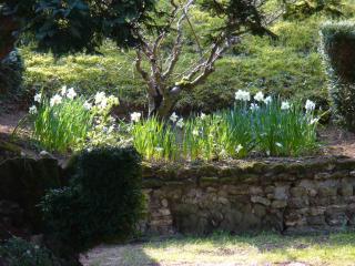 Visite au château d'Ambleville 942530amble21