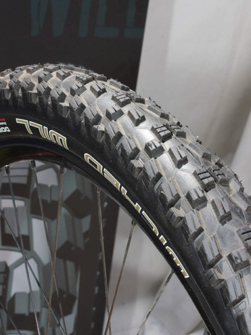 News Schwalbe  977491wicked_will