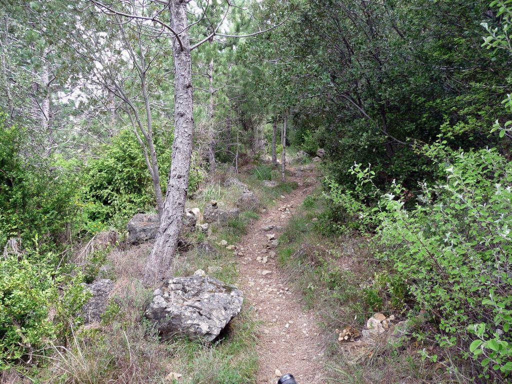 Arboras - Col du Vent - Canyon du Diable - Round 3 979731tn_P1010607