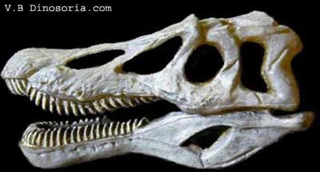 Baryonyx 152344spinosaurus_1
