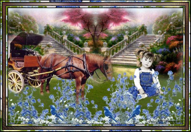 Tag le jardin magique 162830jardinmagique