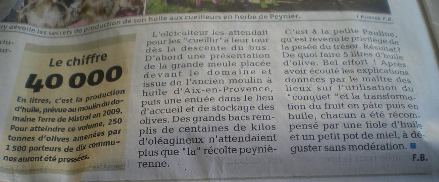 LA VEGETATION MEDITERRANEENNE - Page 2 198160IMGP8635