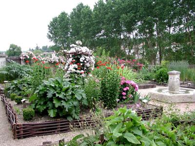 (10 novembre 1457 à...) 199473jardin_jardin_medieval_de_dignac_557_1