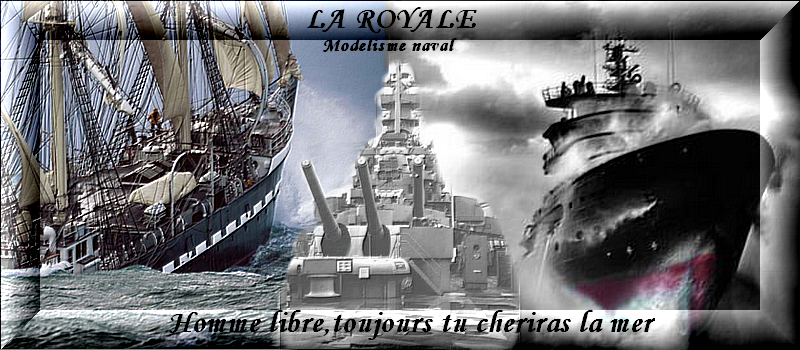 NOUVELLE BANNIERE !!! THE VOTE !!! 1er tour 23521banniere_la_royale_3