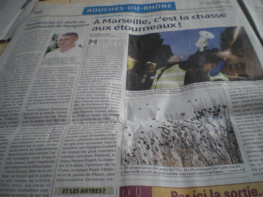 """MASSILIA CAPITALE MONDIALE DE L""""OCCITANIE - Page 2 247017IMGP8637"""