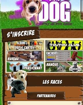 Chien : Ptit Dogs 254166index_06_2
