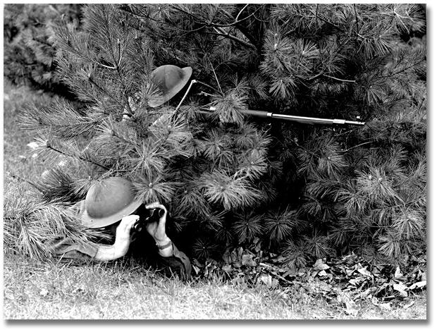FUSIL ROSS MARK 3B 3037848792_pine_tree_620