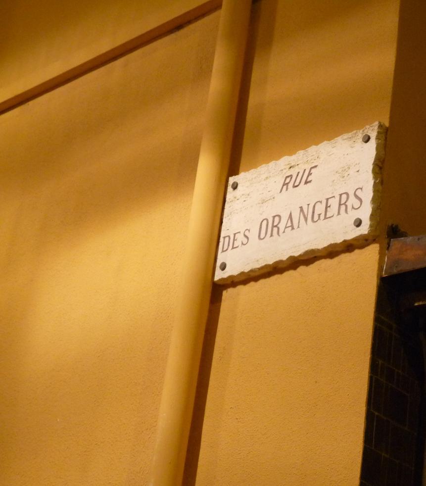 ROCHER DE MONACO :UN LYON REPU ET SANS RESSORT  NOUS LAISSE FRIGORIFIES SUR NOTRE FAIM :ASM 1 OL 1 - Page 2 310110P1030100