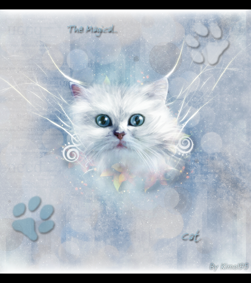 Kimel' graph - Page 6 374185The_magical_cat_copie