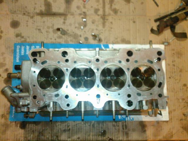 integra  preparation frt motorsport 441129656