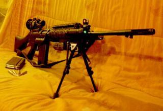 photos de vos armes TLD - Page 2 482401fal_avec_sa_trilux