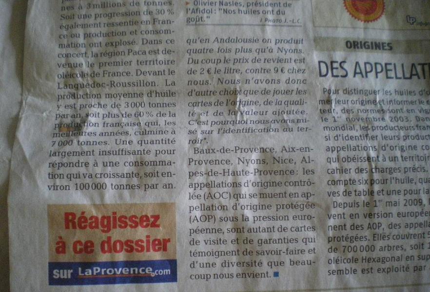 LA VEGETATION MEDITERRANEENNE - Page 2 542012IMGP6108